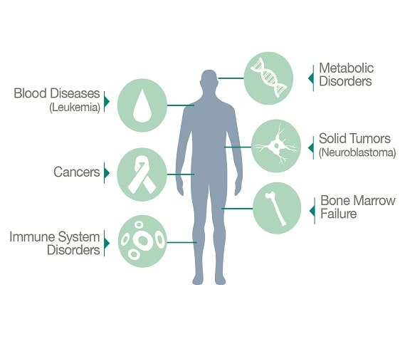 human body with cord blood treatments